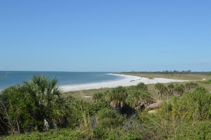 FLORIDE33